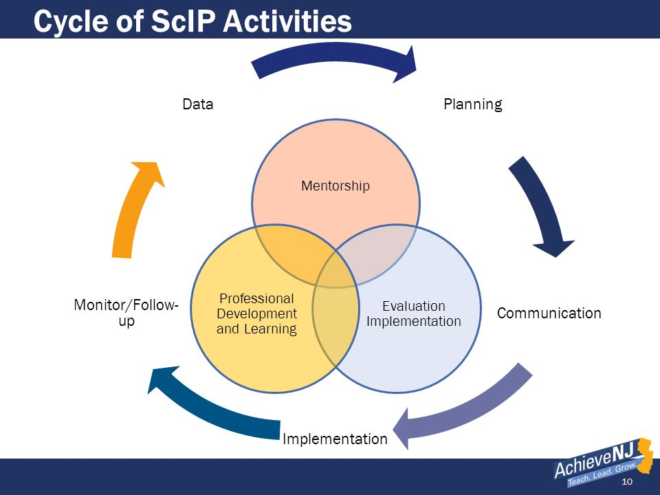 Cycle of ScIP Activities