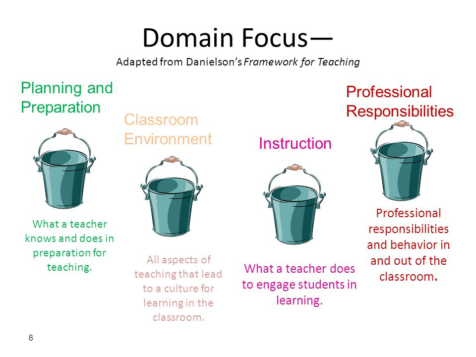 Domain Focus— Adapted from Danielson's Framework for Teaching