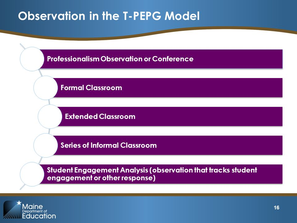Observation in the T-PEPG Model