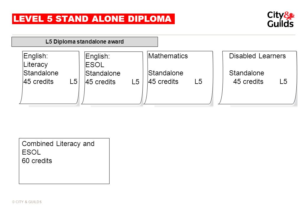 LEVEL 5 STAND ALONE DIPLOMA