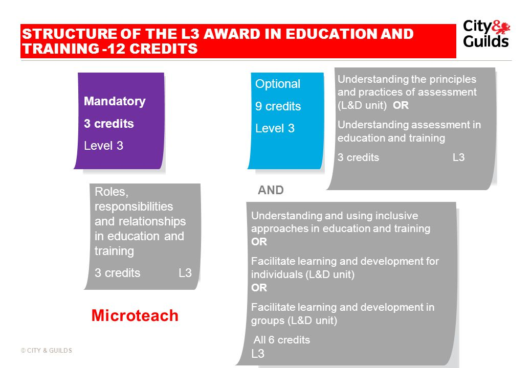 STRUCTURE OF THE L3 AWARD IN EDUCATION AND TRAINING -12 CREDITS