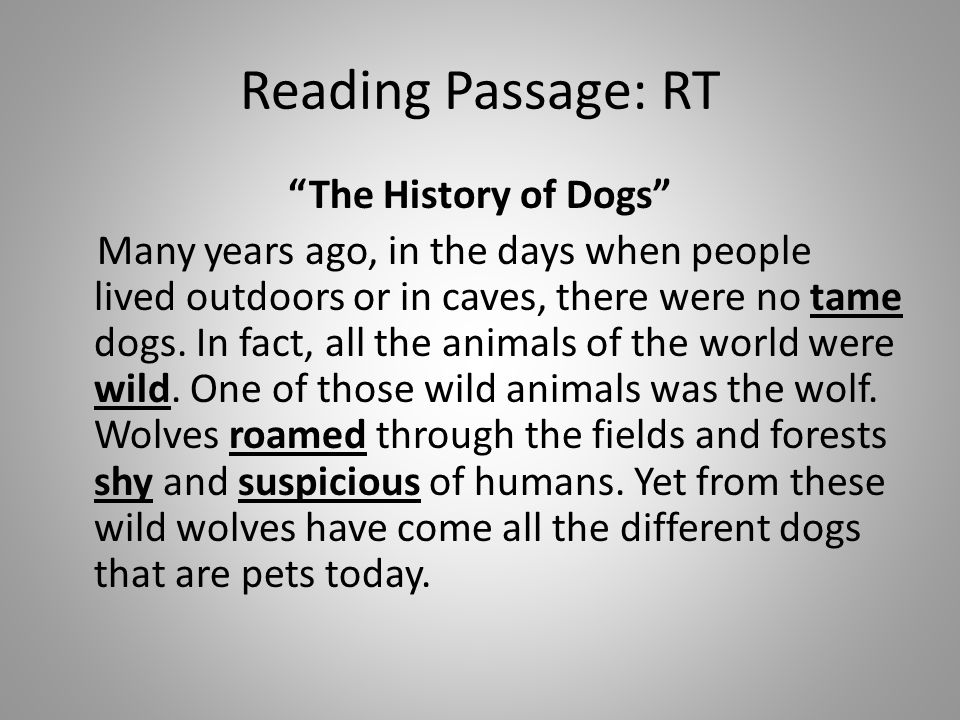 Reading Passage: RT The History of Dogs