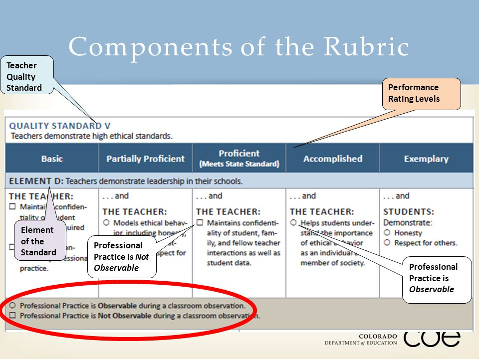 Components of the Rubric