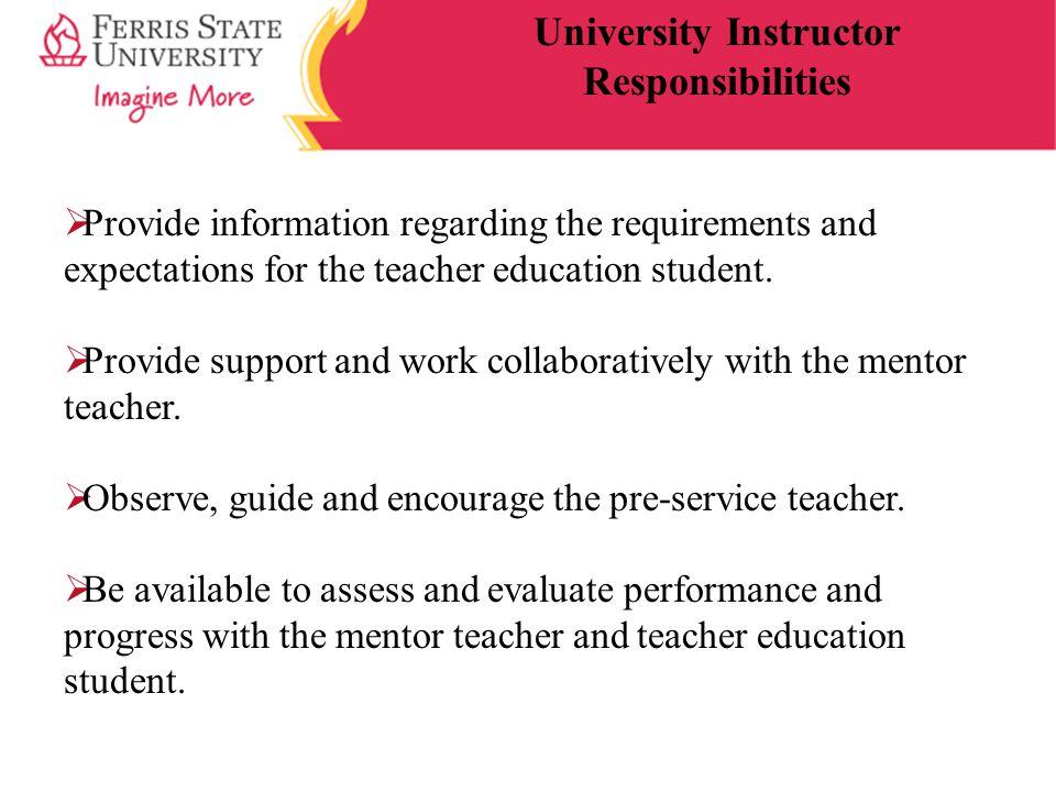 University Instructor