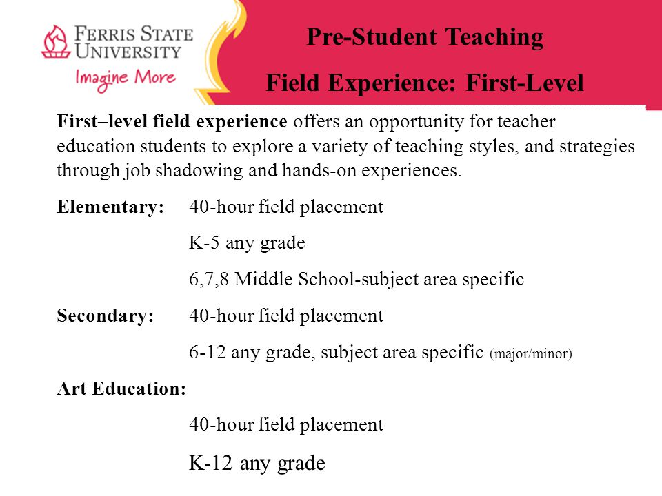 Field Experience: First-Level