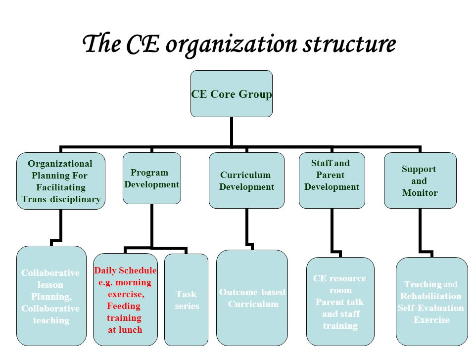 The CE organization structure