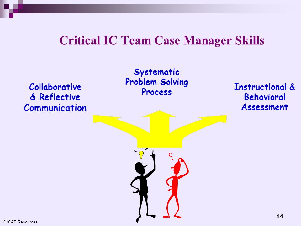 Critical IC Team Case Manager Skills