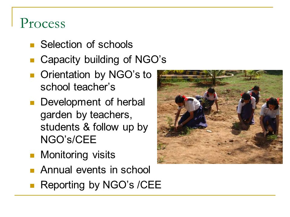 Process Selection of schools Capacity building of NGO's