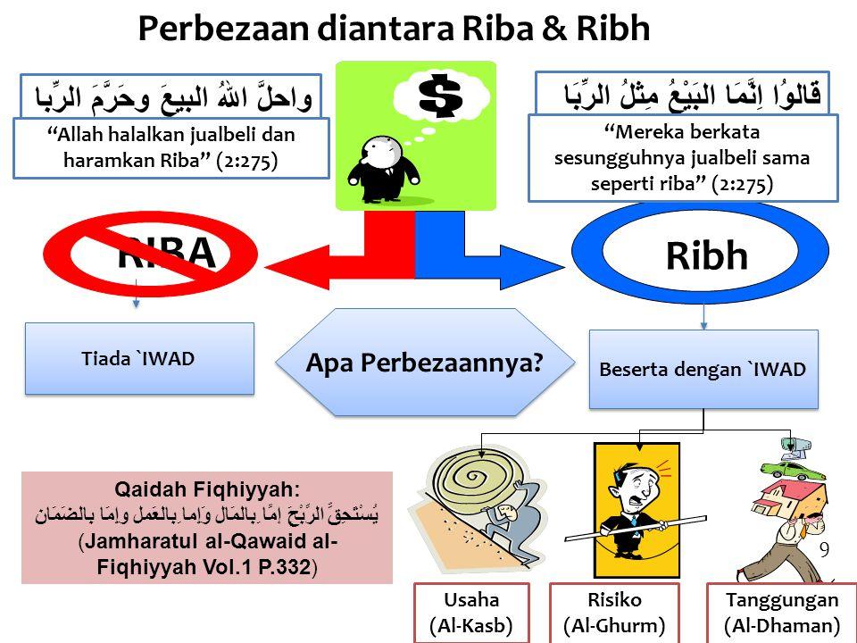 RIBA Ribh Perbezaan diantara Riba & Ribh