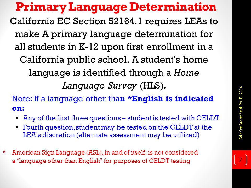 Primary Language Determination
