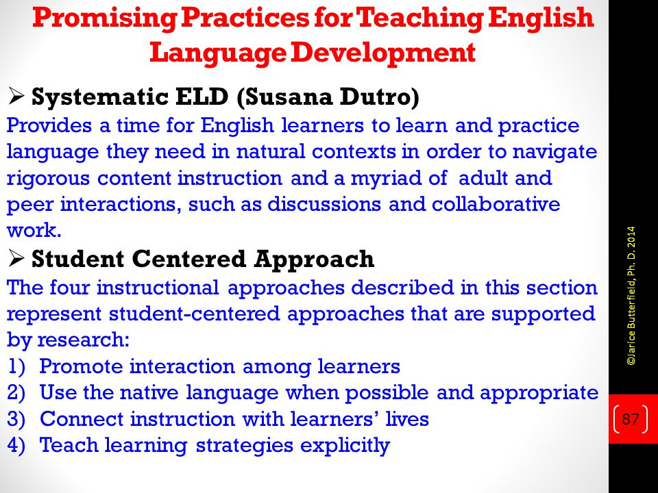 Promising Practices for Teaching English Language Development