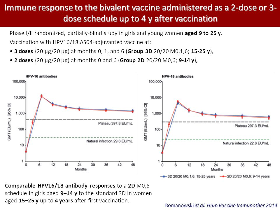 Immune response to the bivalent vaccine administered as a 2-dose or 3-dose schedule up to 4 y after vaccination