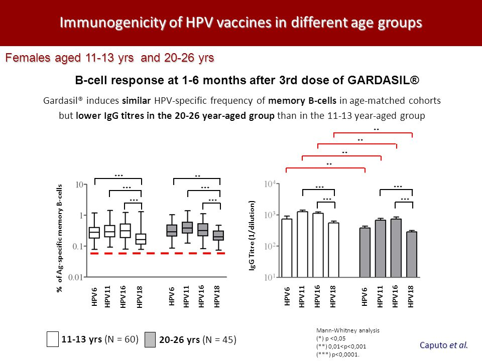 B-cell response at 1-6 months after 3rd dose of GARDASIL®