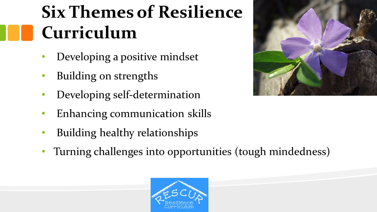 Six Themes of Resilience Curriculum