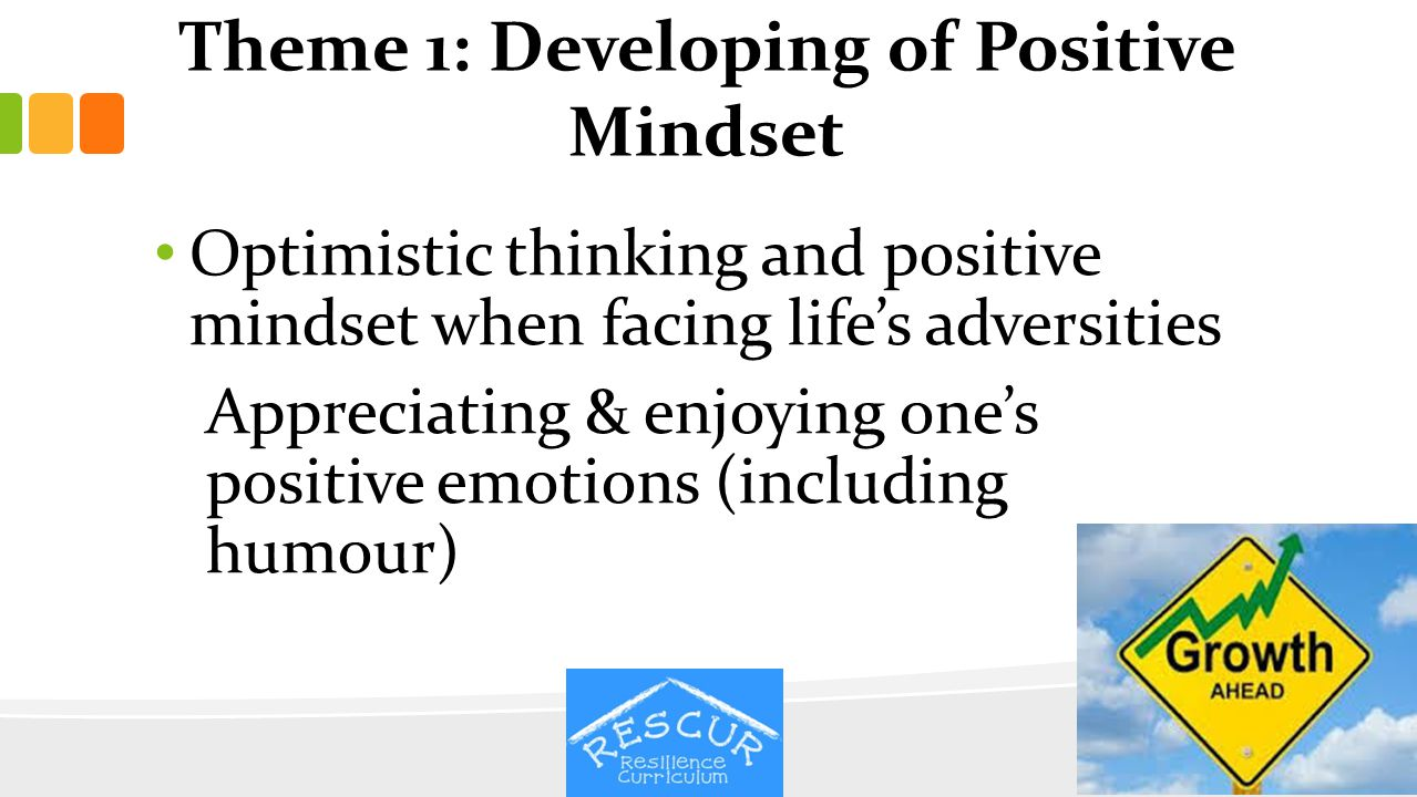 Theme 1: Developing of Positive Mindset