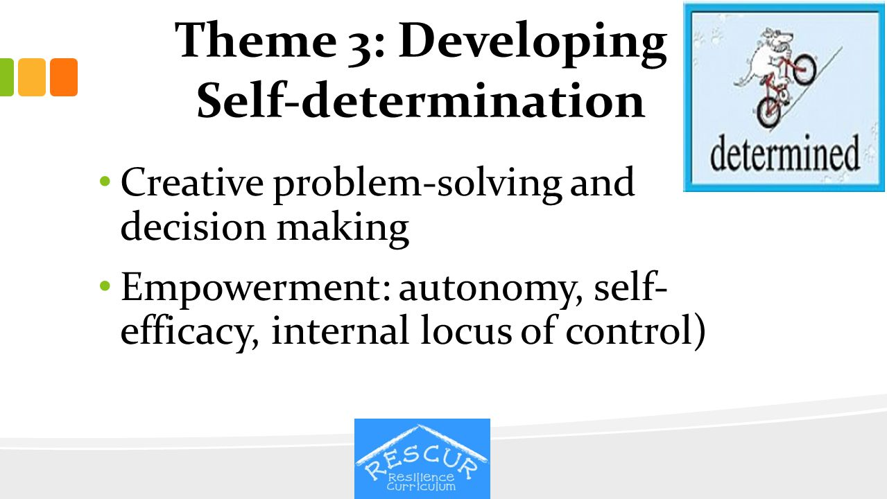 Theme 3: Developing Self-determination