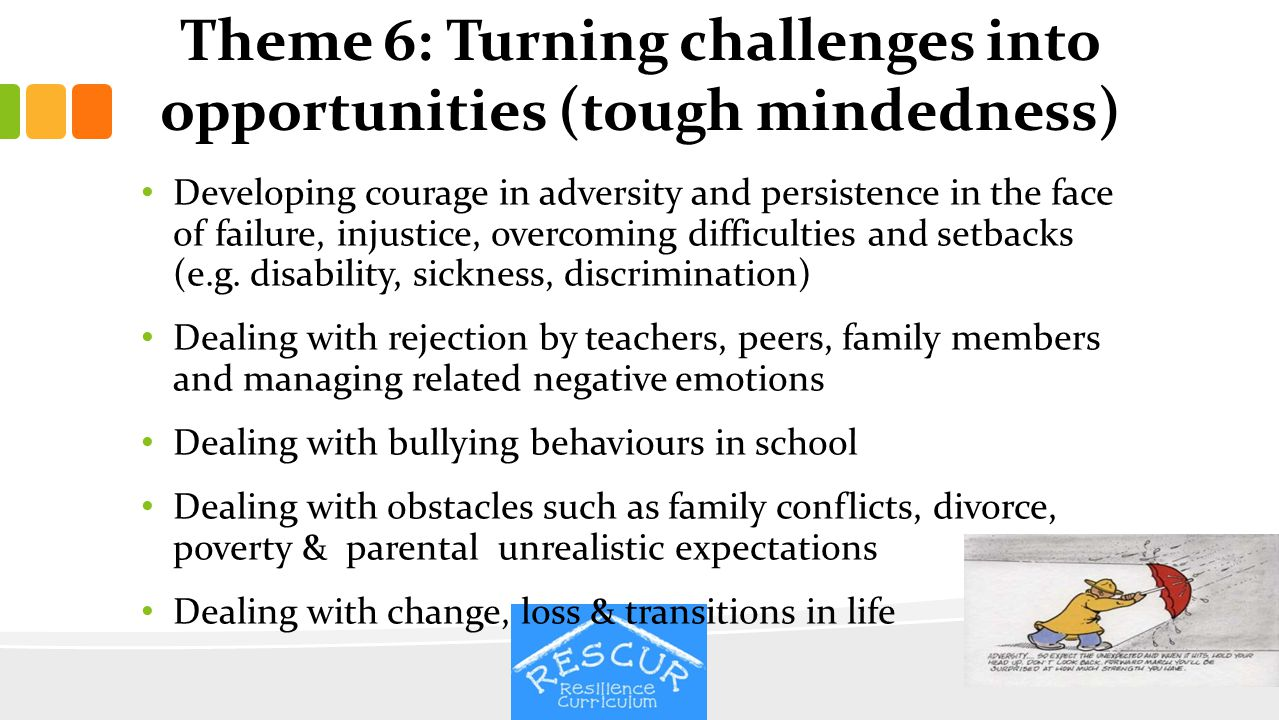 Theme 6: Turning challenges into opportunities (tough mindedness)