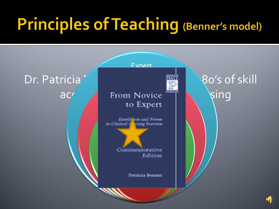 Principles of Teaching (Benner's model)