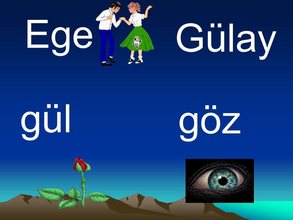 Ege Gülay gül göz
