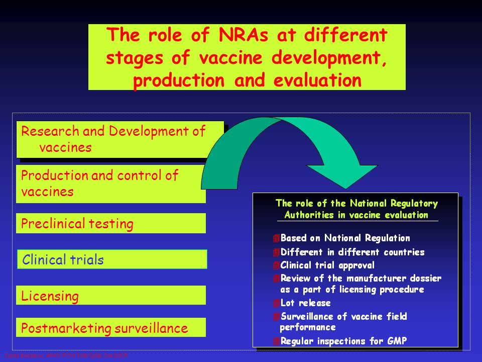 The role of NRAs at different stages of vaccine development, production and evaluation