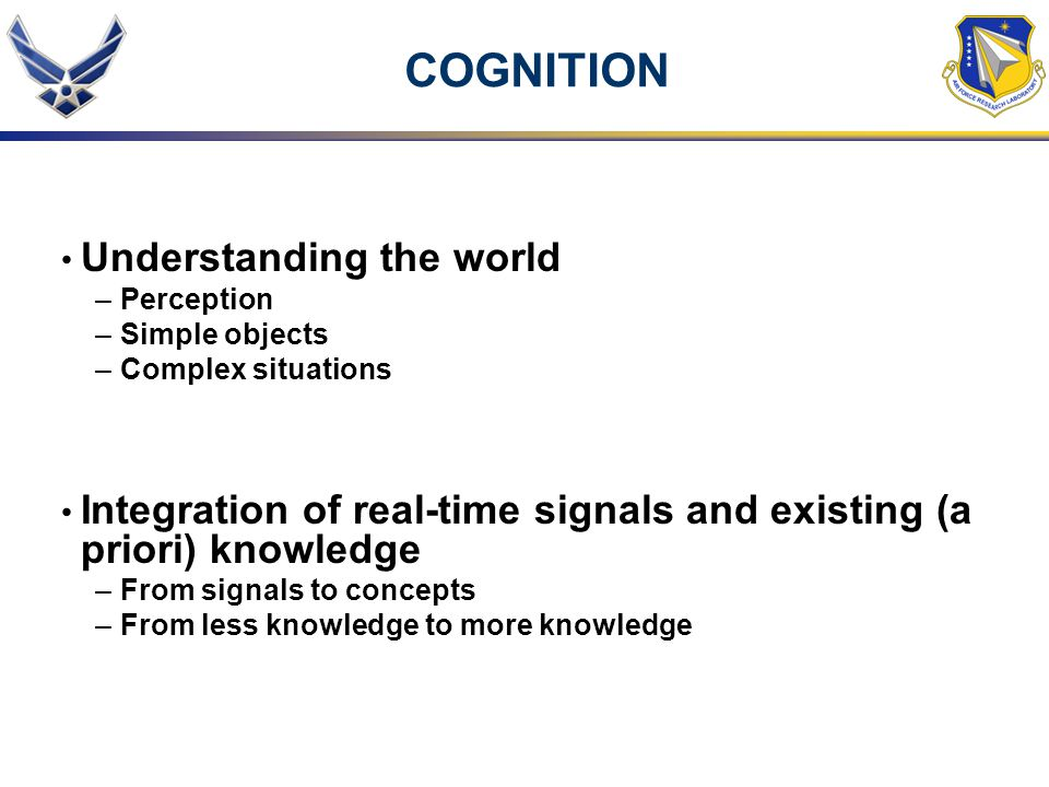 COGNITION Understanding the world