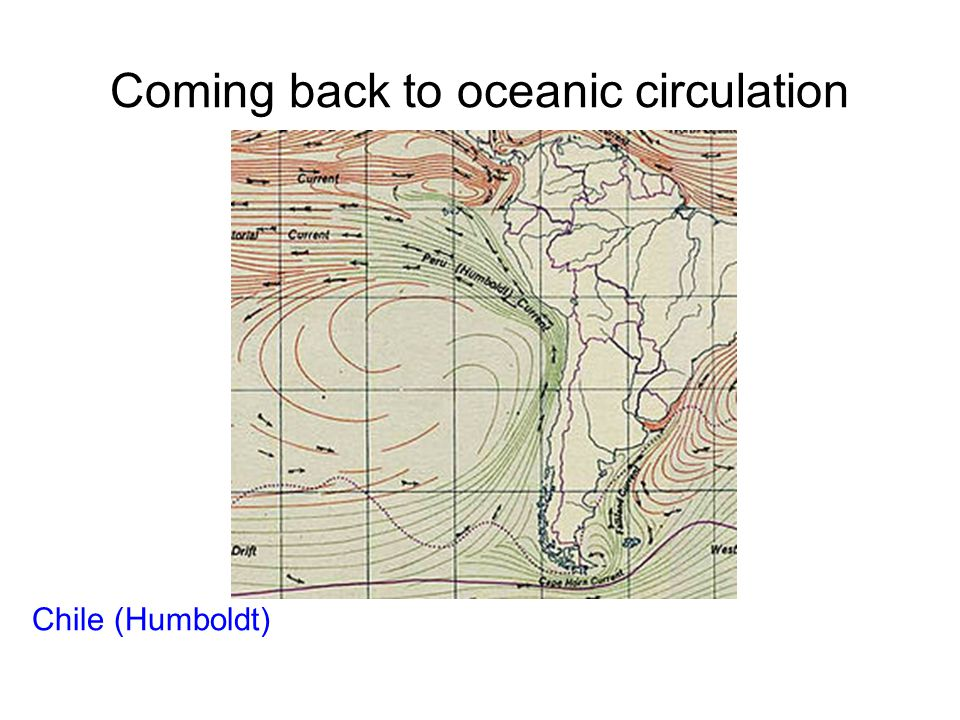 Coming back to oceanic circulation