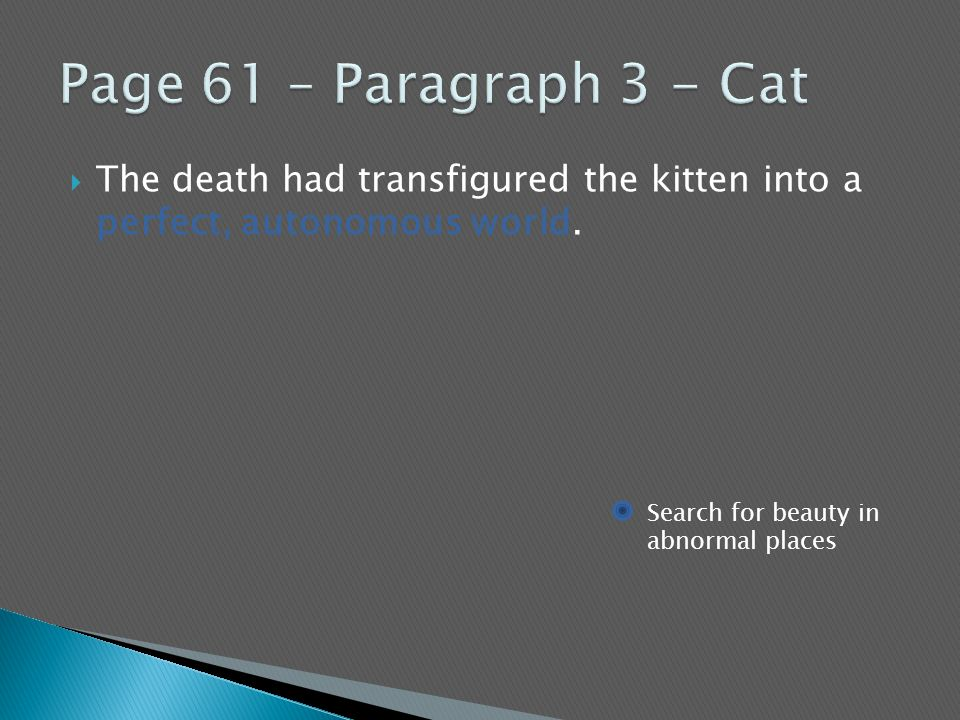 Page 61 – Paragraph 3 - Cat The death had transfigured the kitten into a perfect, autonomous world.