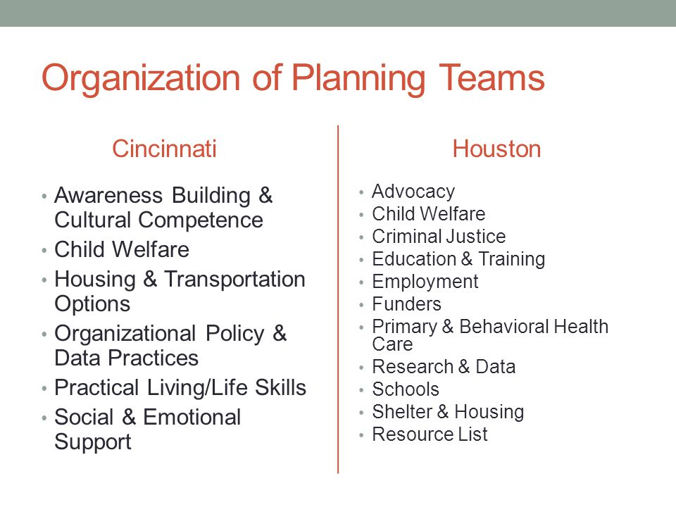 Organization of Planning Teams