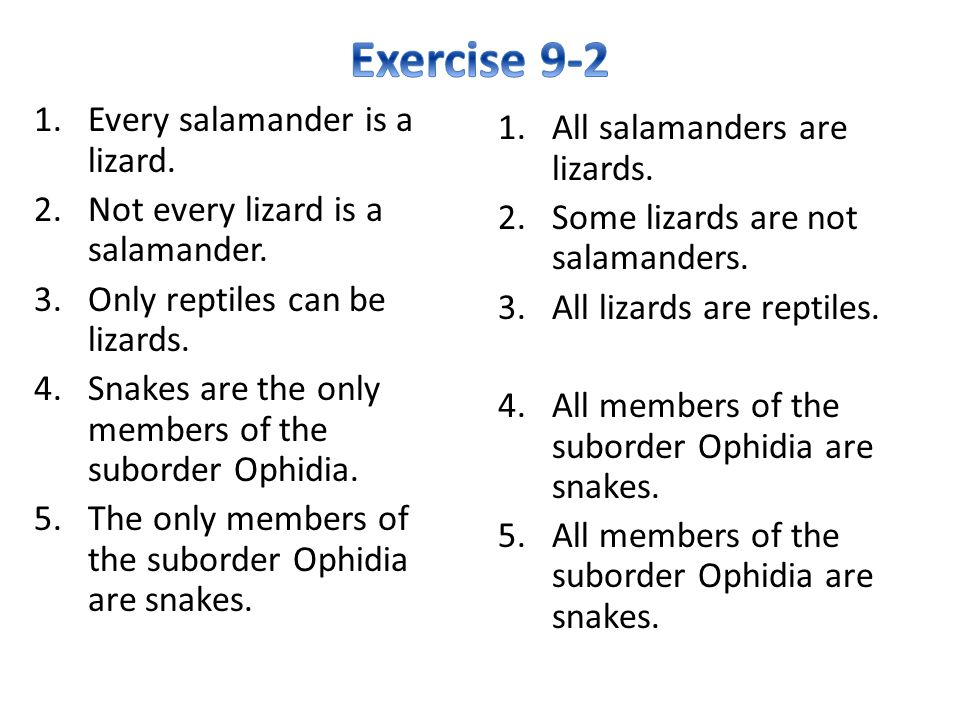Exercise 9-2 Every salamander is a lizard.