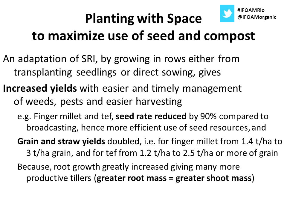 Planting with Space to maximize use of seed and compost