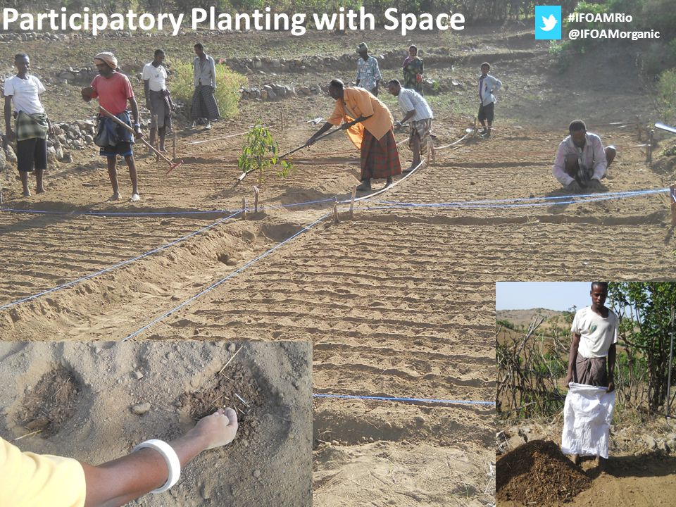 Participatory Planting with Space