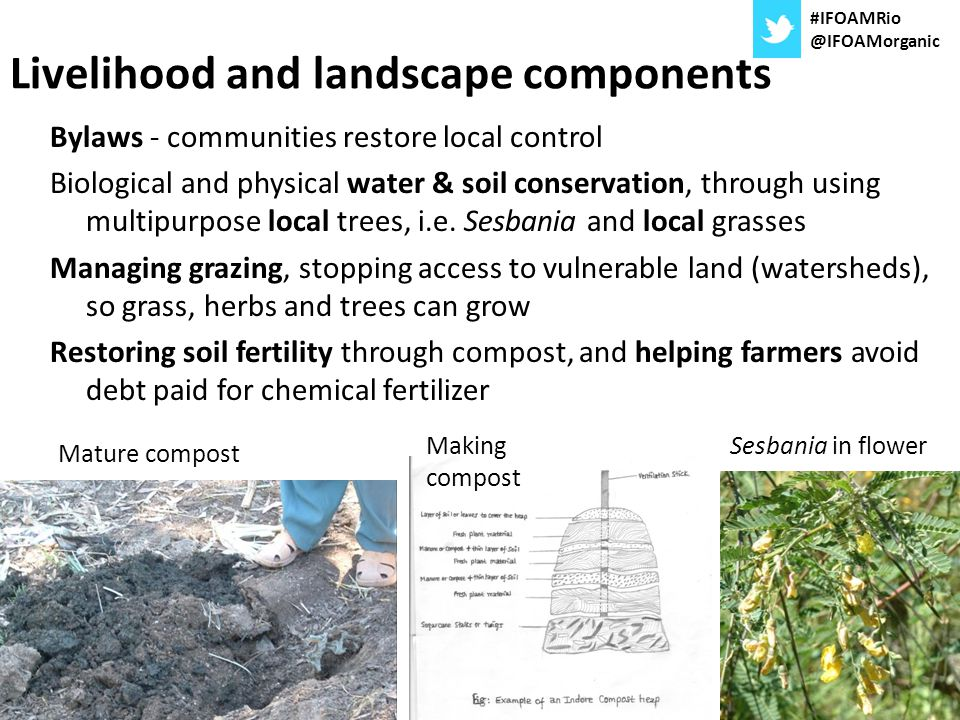 Livelihood and landscape components
