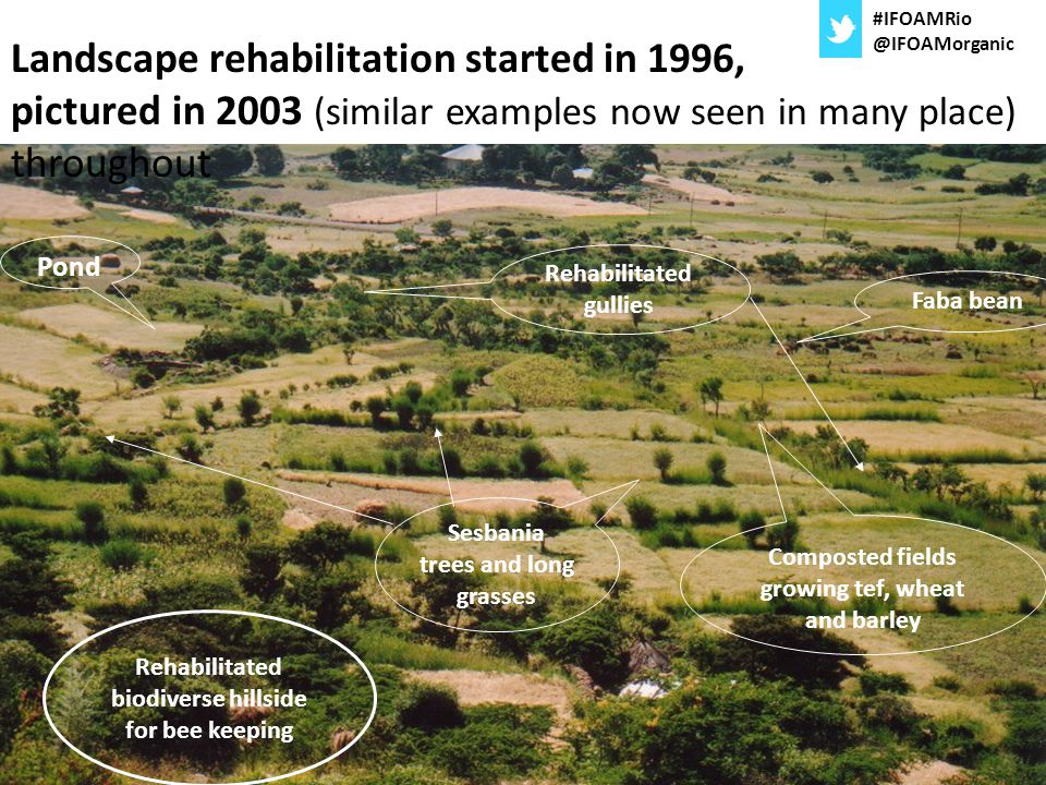 #IFOAMRio @IFOAMorganic. Landscape rehabilitation started in 1996, pictured in 2003 (similar examples now seen in many place) throughout.