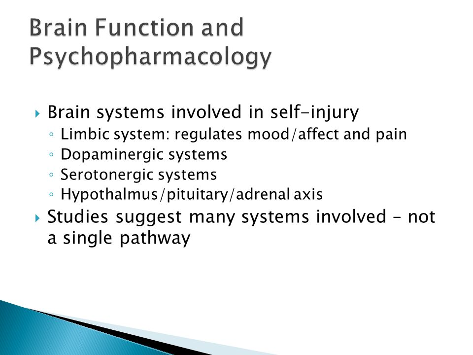 Brain Function and Psychopharmacology