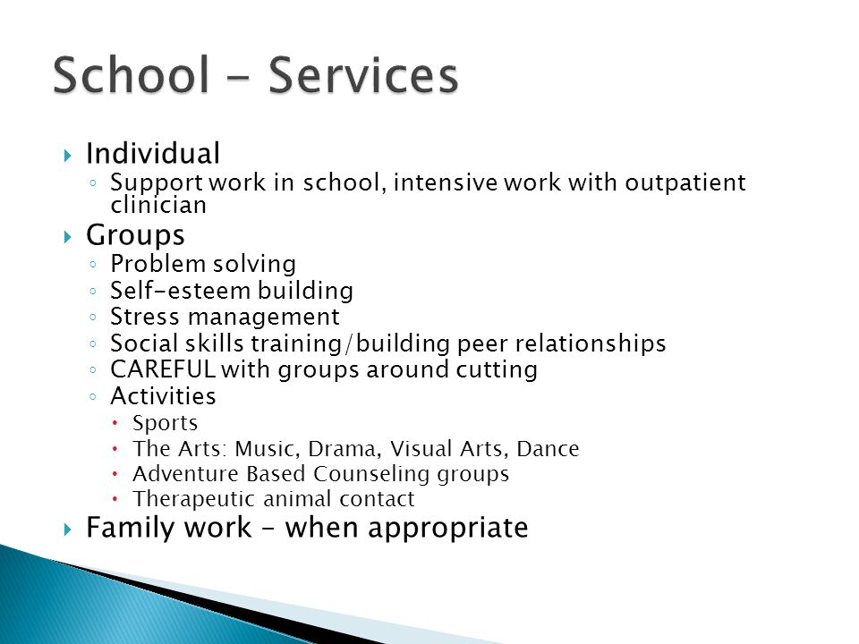 School - Services Individual Groups Family work – when appropriate