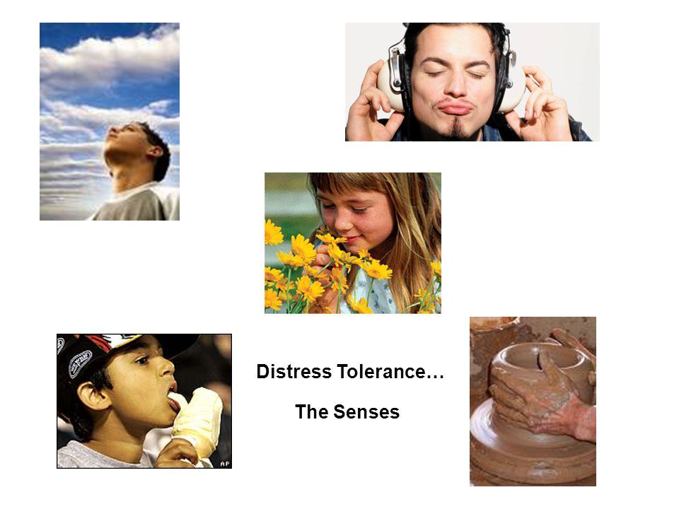 Distress Tolerance… The Senses