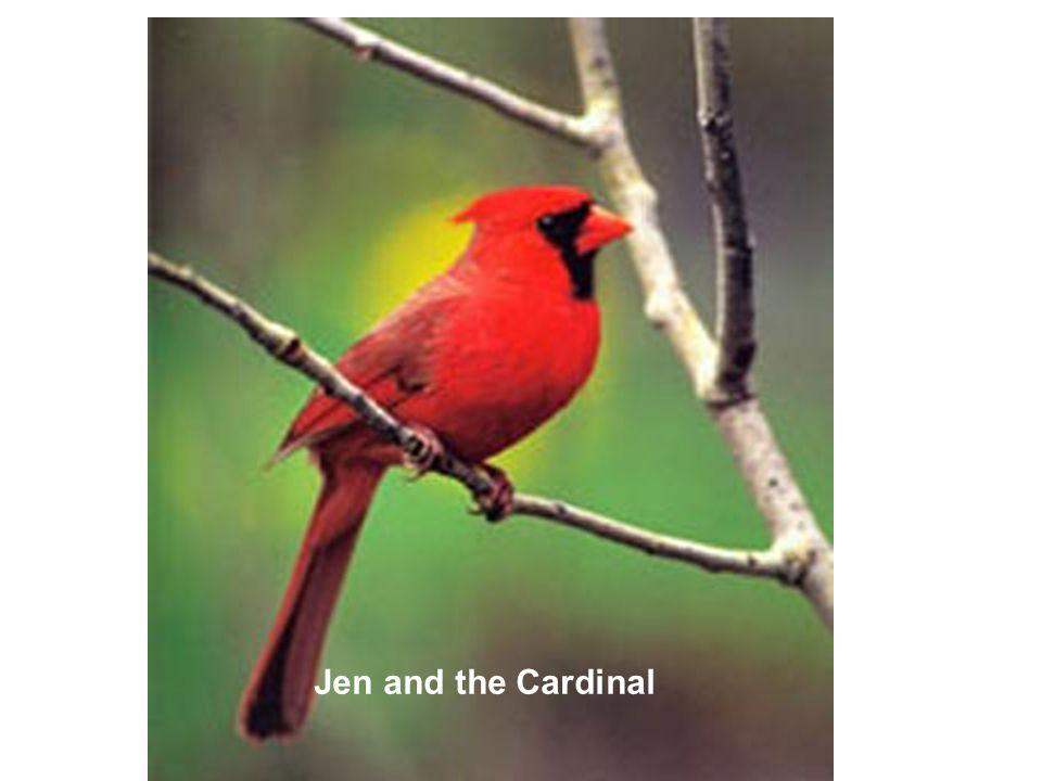 Jen and the Cardinal