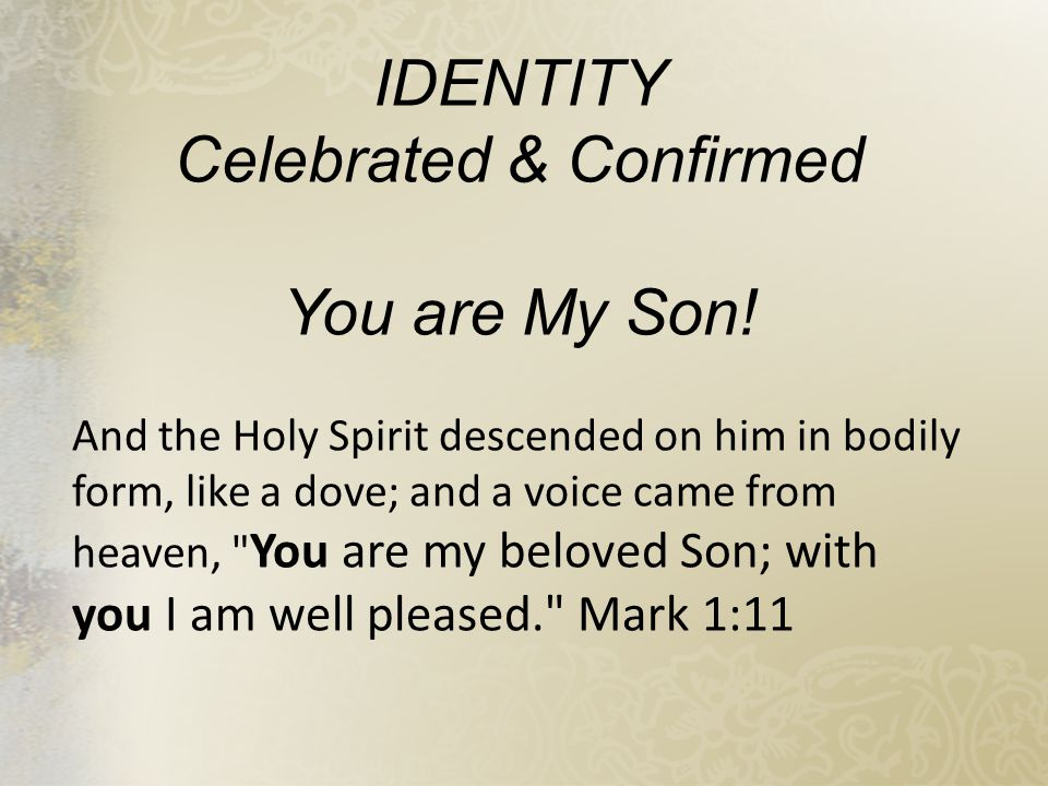 Celebrated & Confirmed
