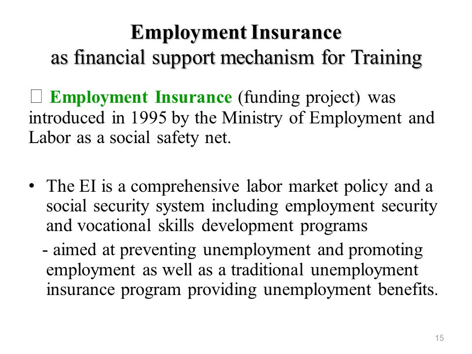 Employment Insurance as financial support mechanism for Training