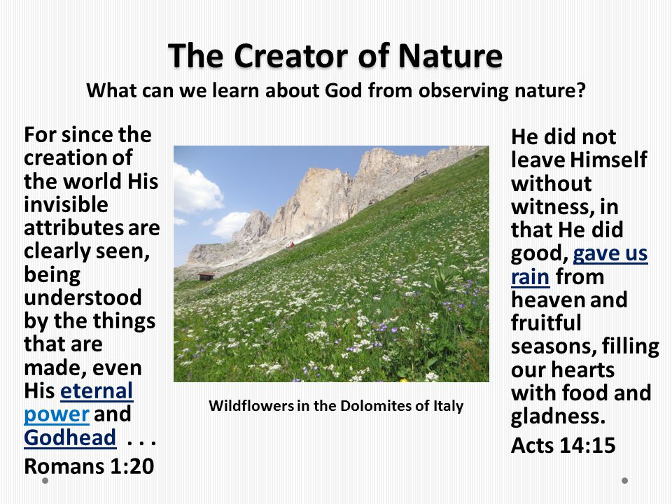The Creator of Nature What can we learn about God from observing nature