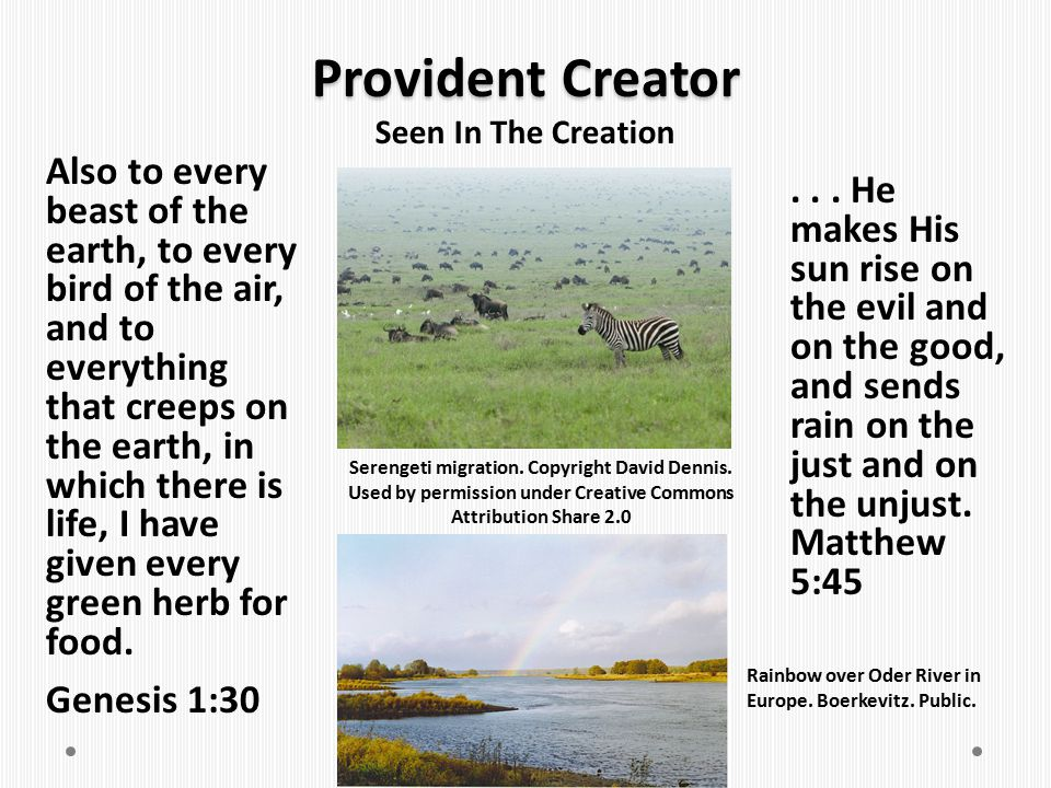 Provident Creator Seen In The Creation.