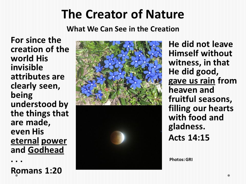 What We Can See in the Creation
