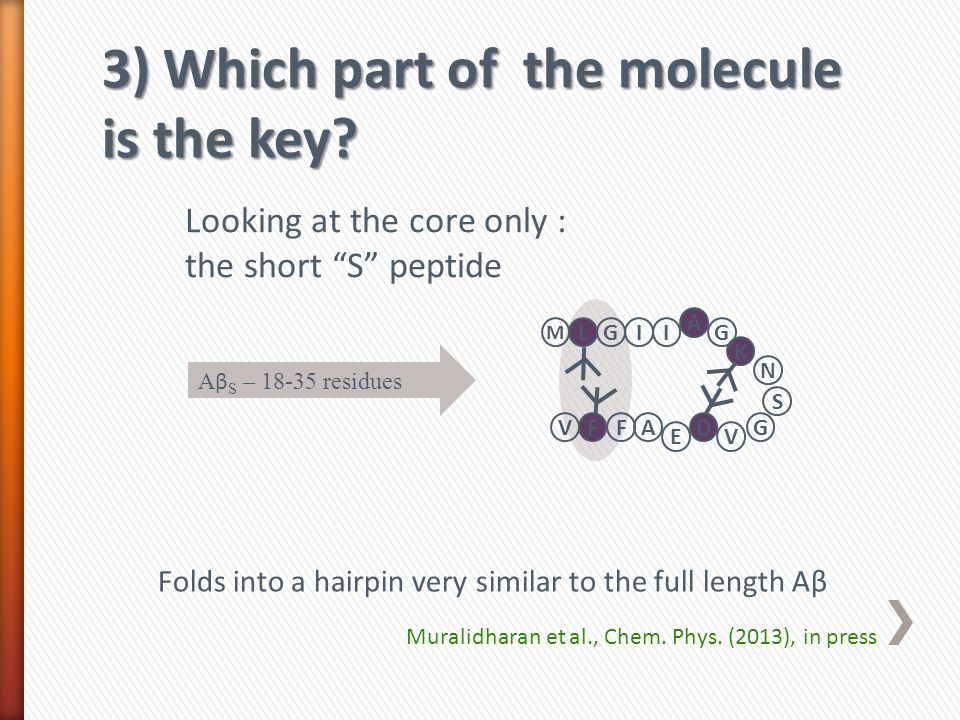 3) Which part of the molecule is the key