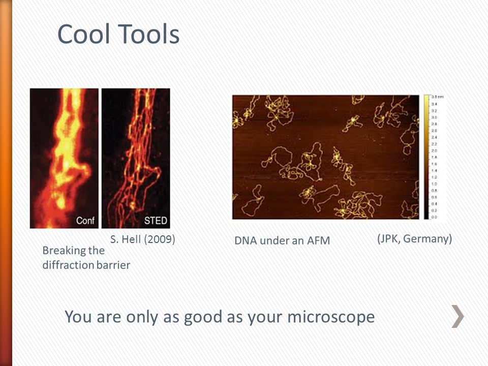 Cool Tools S. Hell (2009) You are only as good as your microscope