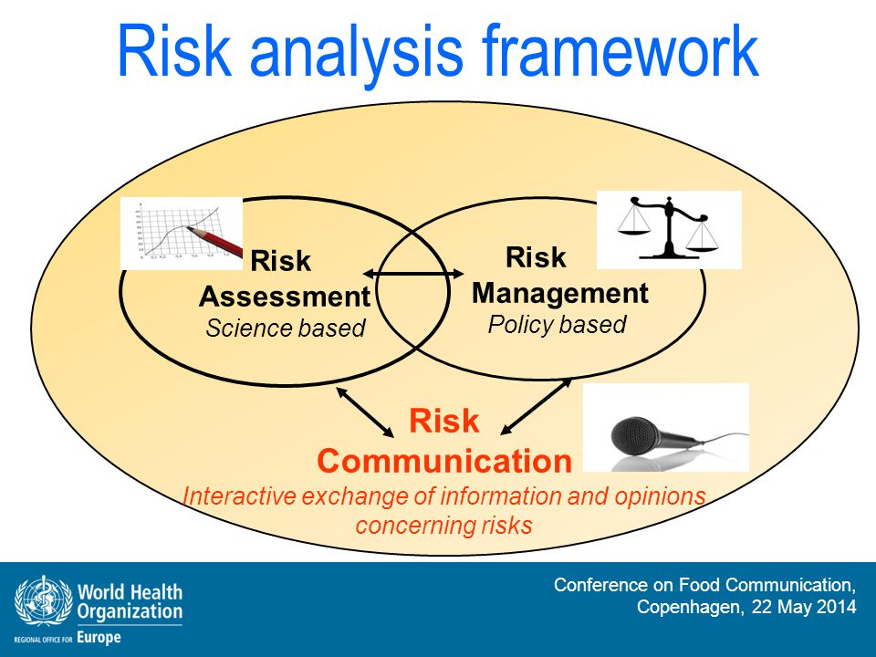 Risk analysis framework