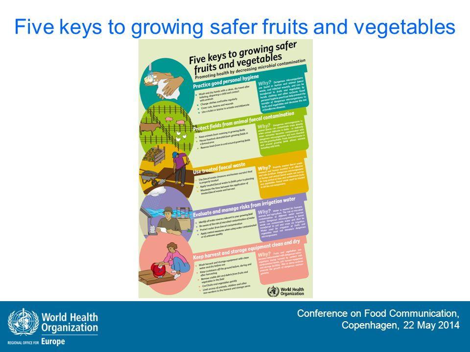 Five keys to growing safer fruits and vegetables