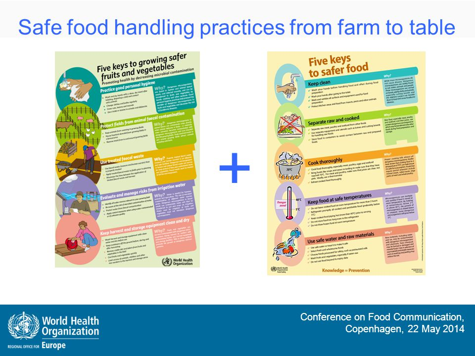 Safe food handling practices from farm to table