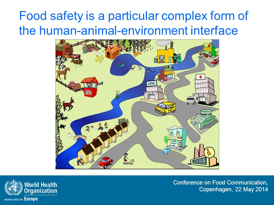 Food safety is a particular complex form of the human-animal-environment interface