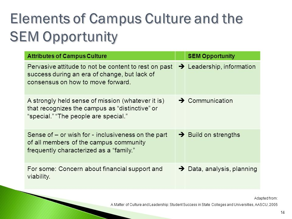 Elements of Campus Culture and the SEM Opportunity