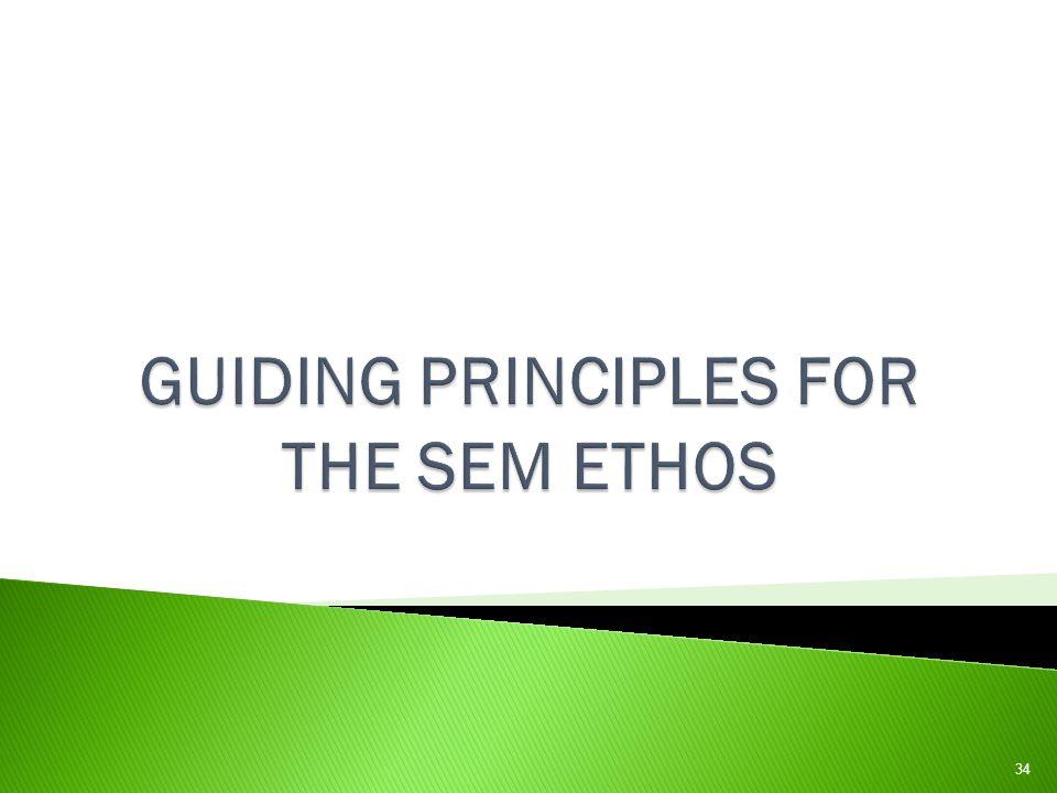 GUIDING PRINCIPLES FOR THE SEM ETHOS